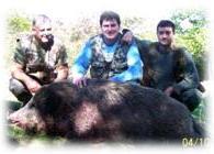 глиган, диво прасе, ивайловград