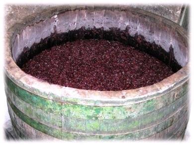 ивайловградско домашно вино, ивайловградско вино, домашно вино