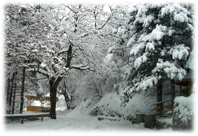 зимата в ивайловград, зимата, ивайловград, изненада