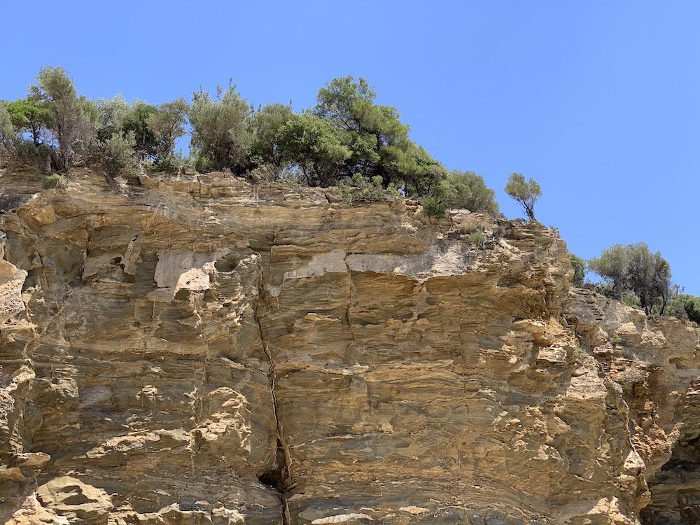 маслини на остров Тасос